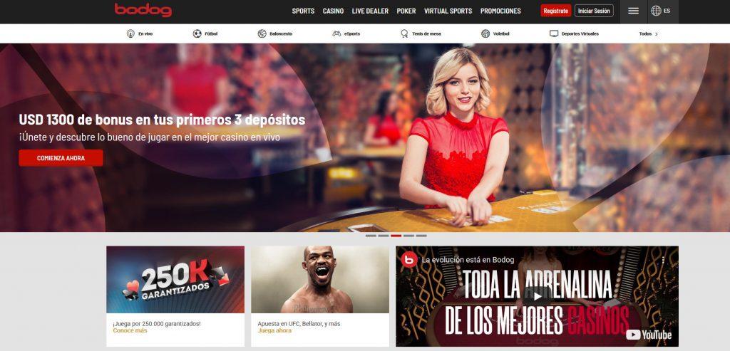bodog casino online bolivia